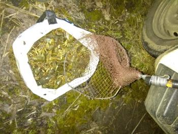 Протягом березня порушники завдали майже 30 тис. грн збитків, - рибоохоронний патруль Хмельниччини